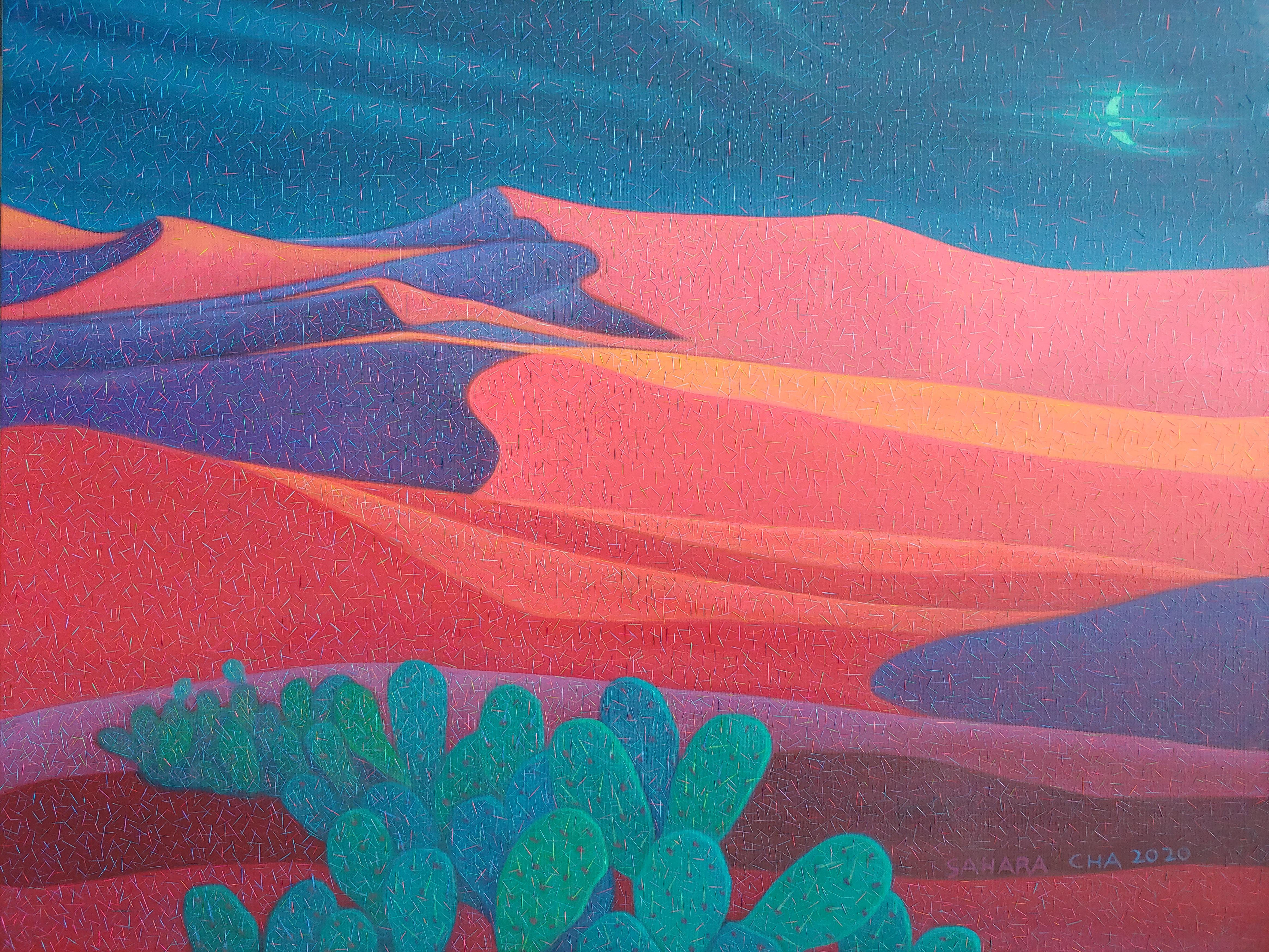 002, 차명주, 사하라의 달, 90.9 x 72