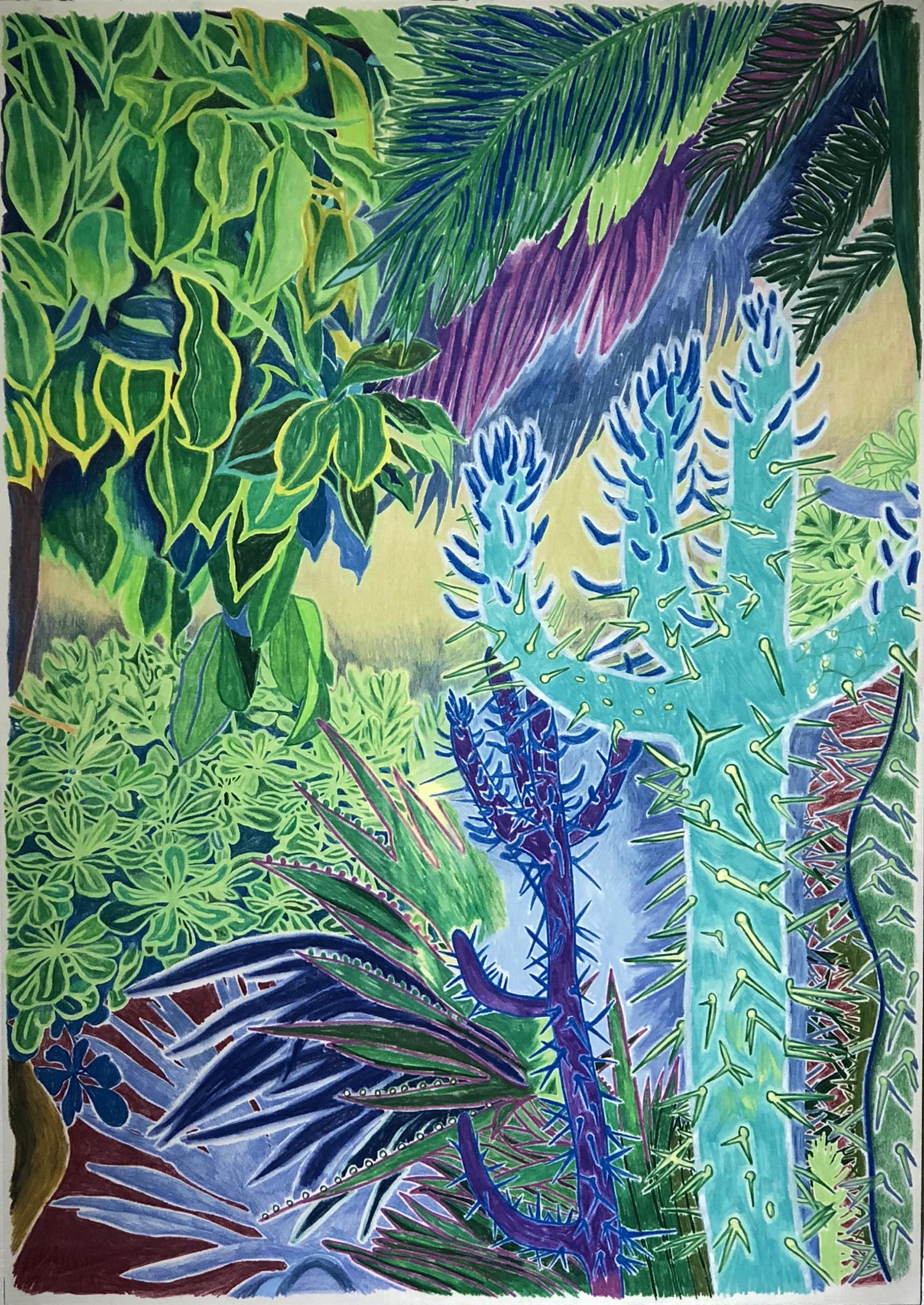 김선희, 온 힘을 다해 자라다, 51 x 36 ,종이 위에 색연필