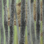 002, 일억 년 전, 117 x 80 cm, 종이에 먹 아크릴 크레용,