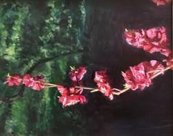 016, 박재웅, 겹벚꽃2, 50 x 40 cm, 보드 위에 유채, 20