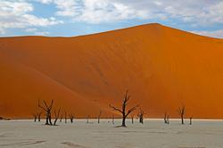 대표_데드블레이, 나미브사막_나미비아, 61 x 91