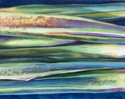 035, 수순(水筍), 30 x 24 cm, oil on canvas,