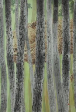 일억 년 전, 117 x 80 cm, 종이에 먹 아크릴 크레용, 2019