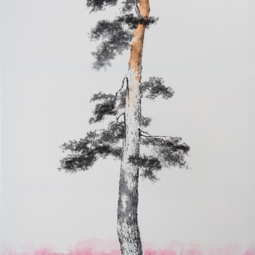 6번 2015,송뢰-초근목피, Muk Acrylic on HanJi,11