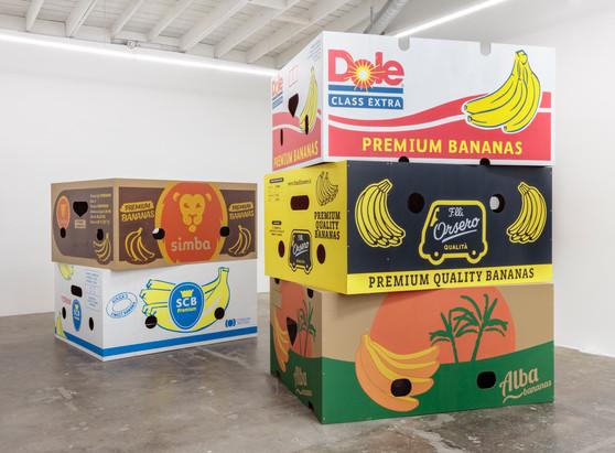 Five Banana Boxes, 2019