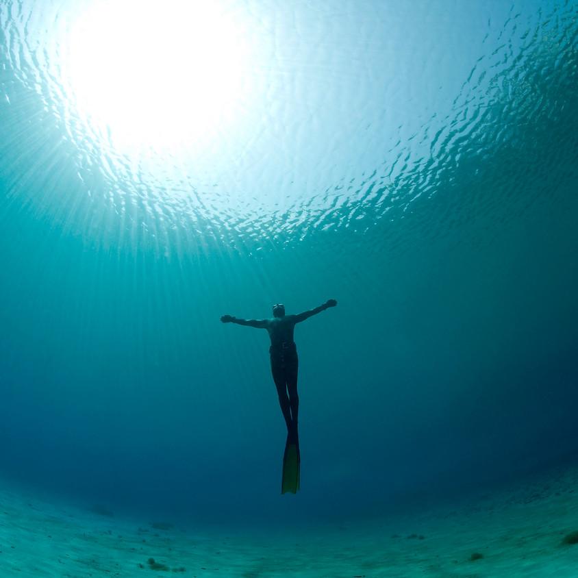 Freediving AIDA International Course
