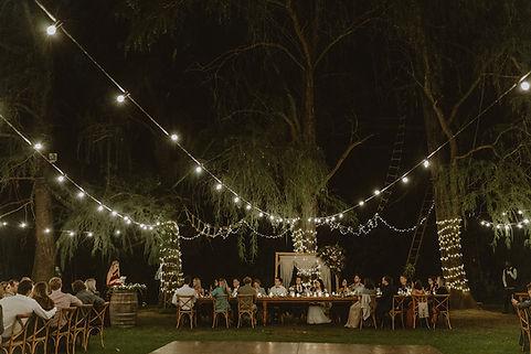 Montpellier wedding bistro lights