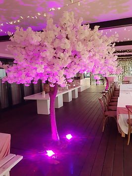 Artificial trees for hire Cape Town