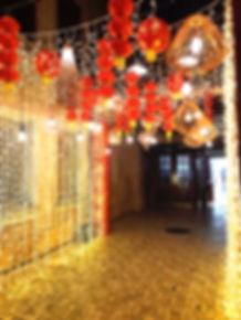 Fairy lights to rent in Cape Tow