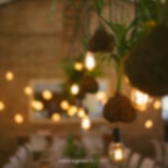 Edison globes weddings Cape Town