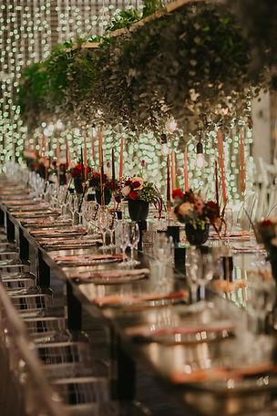 Elandskloof wedding lights