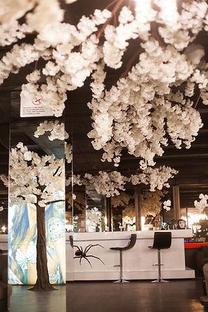 White Cherry Blossom Tree hire events Cape Town