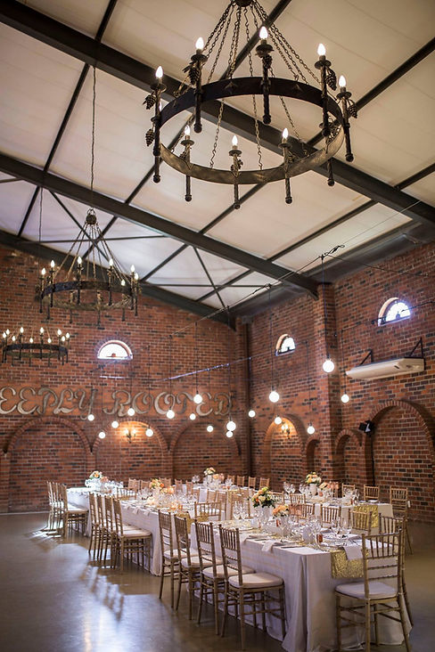 Globe string lights hire Cape Town
