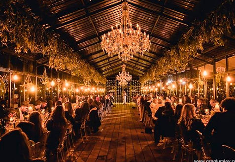Die Woud wedding lights