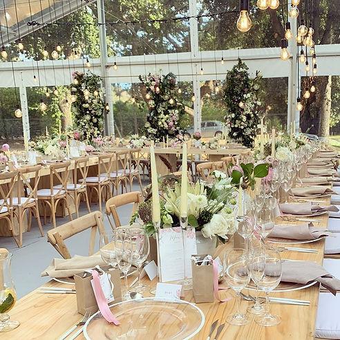 Naked bulbs hire weddings Cape Town