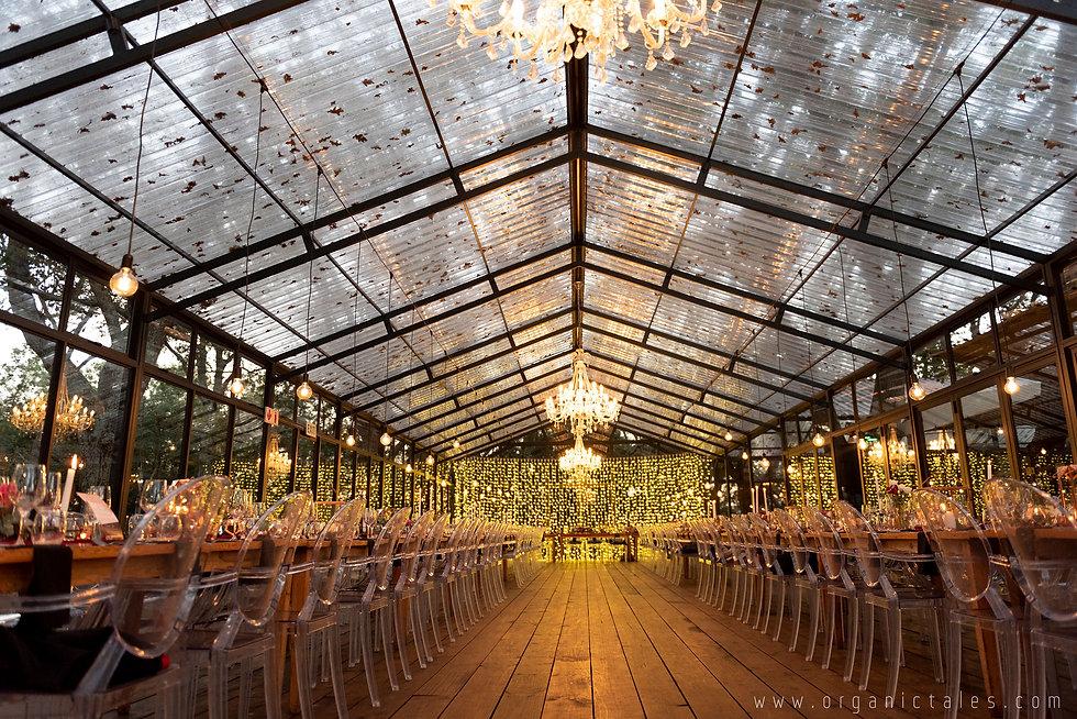 Die Woud wedding lighting