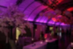 Forest 44 weddings