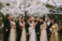 White Cherry Blossom Tree Hire Cape Town