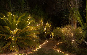 fairy lights to hire weddings cape town