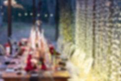 Die Woud weddings fairy lights