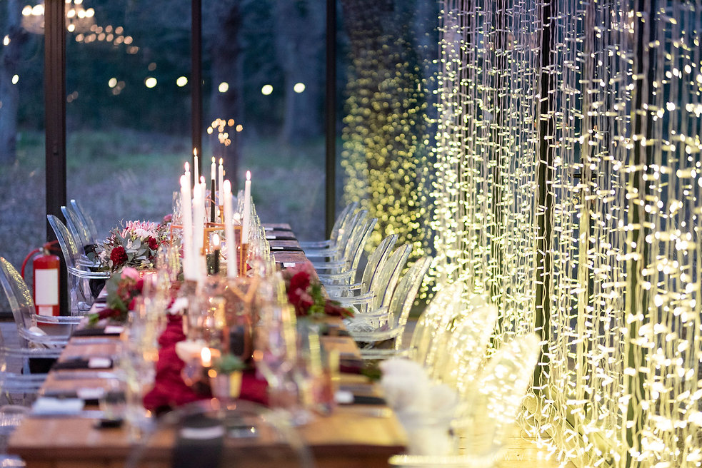Die Woud weddings fairy lights