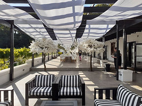 white trees to rent weddings Cape Town