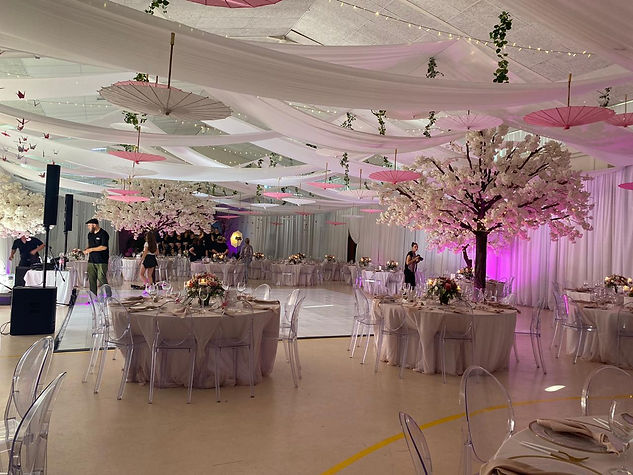Cherry Blossom Tree hire for Weddings and Events