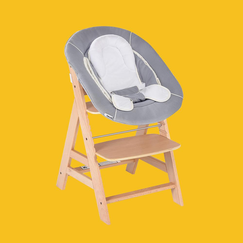 Hauck's Alpha Chair + Bouncer