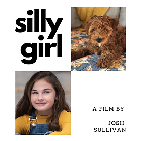 Silly Girl poster.png