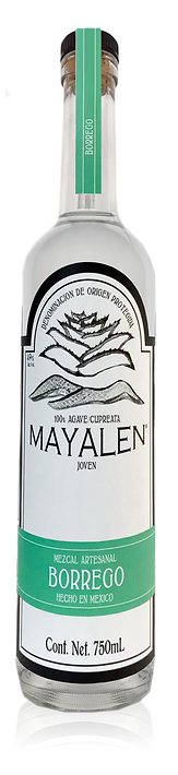 MezcalMayalen_Bottle_USA_Borrego49.png