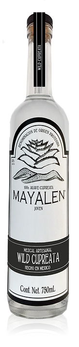 MezcalMayalen_Bottle_USA_Cupreata50.png