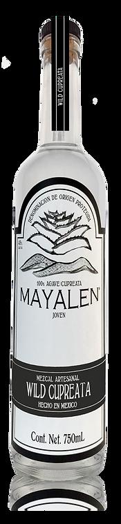 MezcalMayalen_Bottle_USA_Cupreata50.png