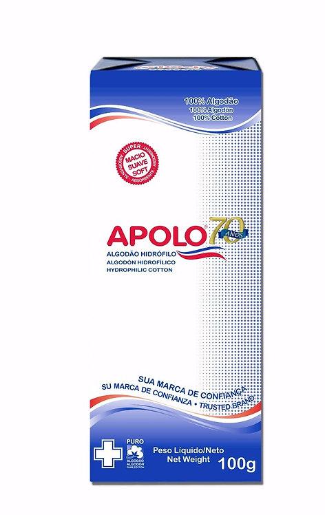ALGODÃO HIDROFILO 100G APOLO (10=1KG)