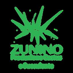 ZUNINO Cactus_sin sfondo.PNG
