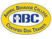 Puppy Training Rye