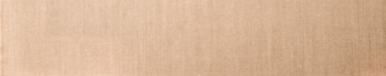 Neautral beige background, linen texture