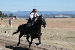 Horse Archer Roberta Beene