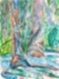 Illustration_Colour_1.jpg