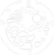 Logo web header white 2.png