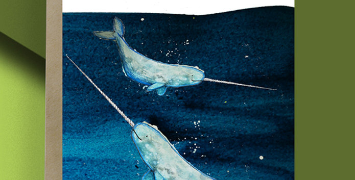 Narwhal Blank Card