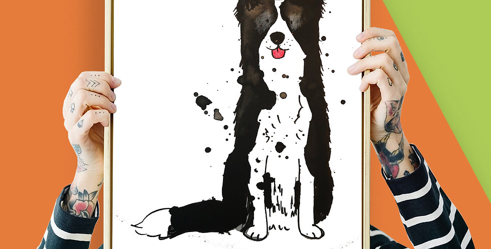 Border Collie Illustration Giclee Print A3 or A3