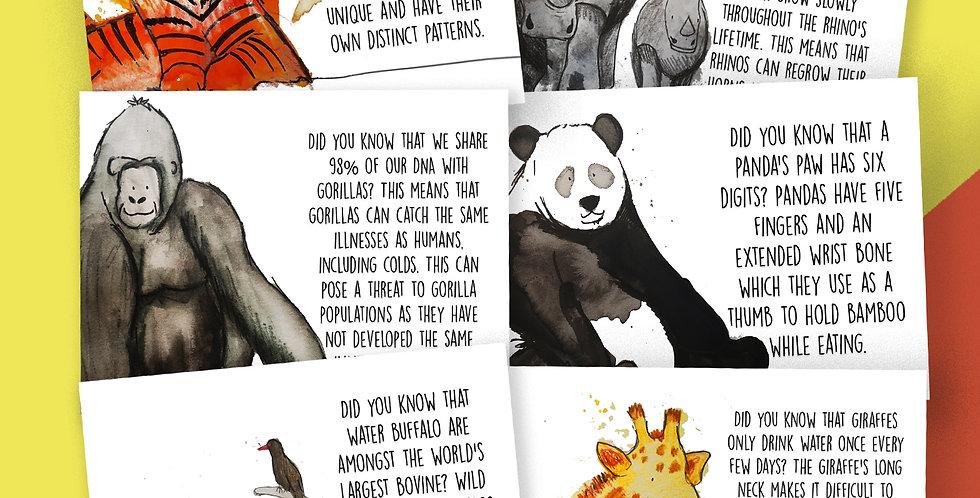 6 x Wild Animals  Facts Postcard Pack
