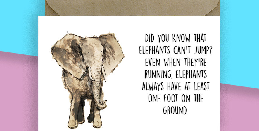 Elephant Animal Fact Greeting Cards  Blank Card