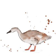 Bean Goose web .jpg