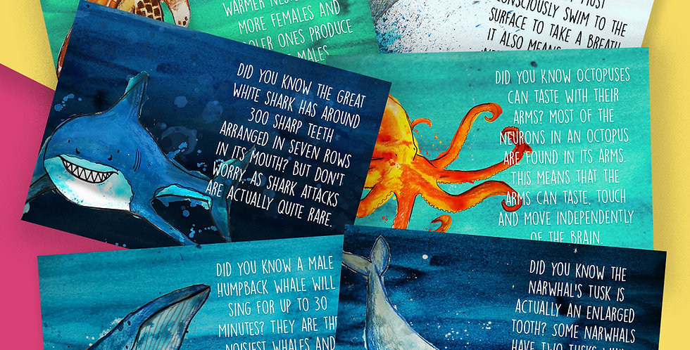 6 x Marine Animal Facts Postcard Pack