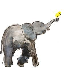 baby elephant .jpg