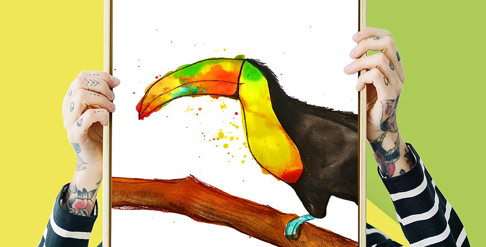 Toucan Illustration Giclee Print A3 or A3