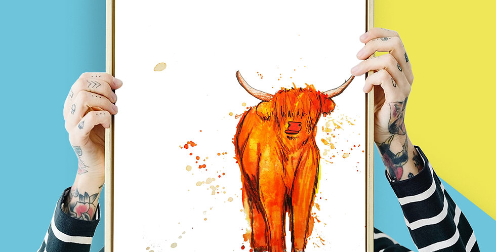Highland Cow Illustration Giclee Print A3 or A4