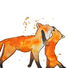 FOX .jpg