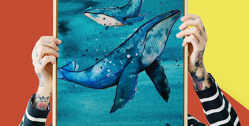 Whale Illustration Giclee Print A3 or A4